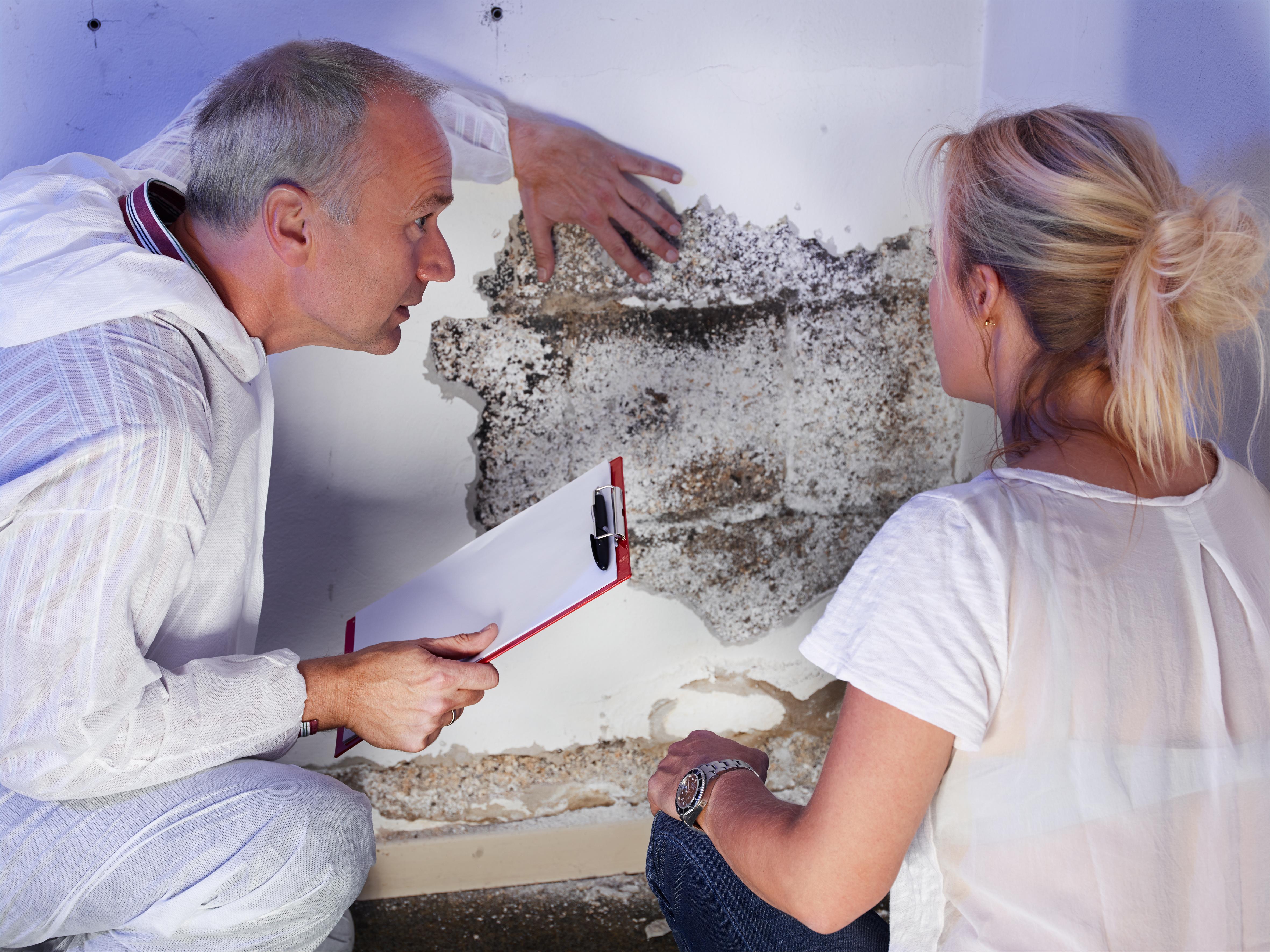 mold inspections nj nj aaa home inspections. Black Bedroom Furniture Sets. Home Design Ideas